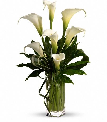Canada flowers stunning arrangement