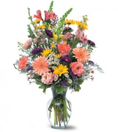 Canada flower assortment of pastel